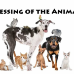 Blessing of the Animals Thumbnail
